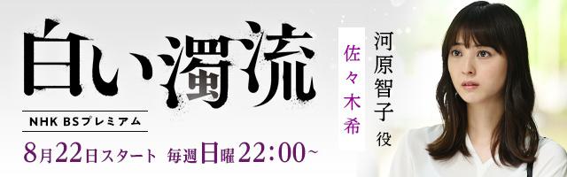 佐々木希 ドラマ「白い濁流」